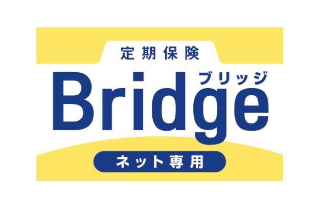 定期保険「ブリッジ」の概要
