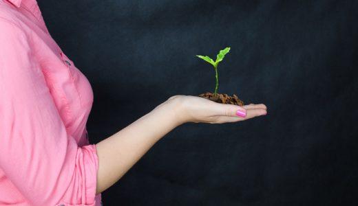 老後資金や生活費、どうする?30代女子のリアルな貯蓄と投資の割合【実家暮らし・仕送りチートなし】